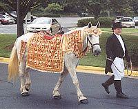 Tmx 1456938316162 Cindy  John Brandy Station wedding transportation