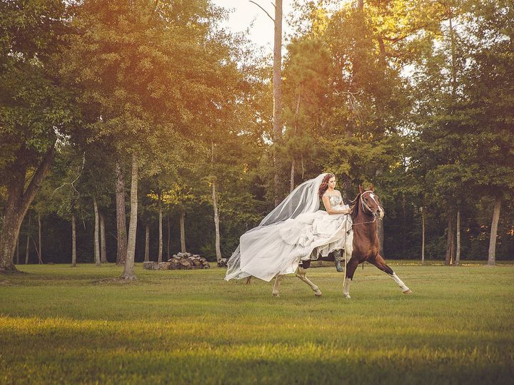 Tmx 1415174589124 Micaleh052 Houston, TX wedding photography