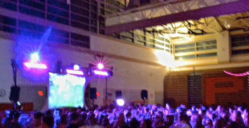 the dj lights worked really well in their gy