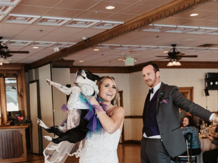 Tmx Wedding Dogs 2 51 1336 160288802411421 Newport Beach, CA wedding venue