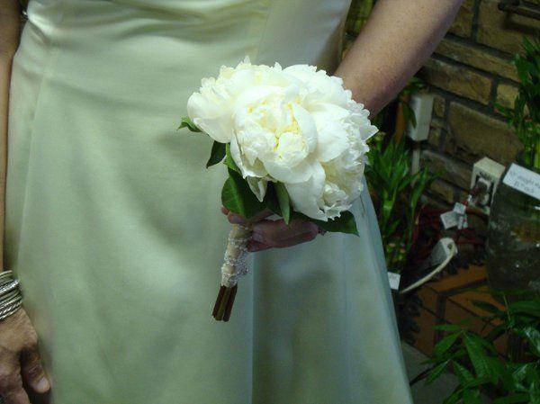Tmx 1299933541630 WeddingBouquet43SteinYourFloristCo. Philadelphia wedding florist