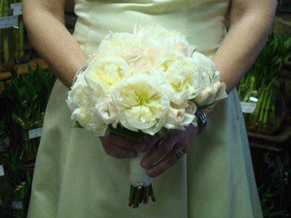 Tmx 1299933555536 WeddingBouquet44SteinYourFloristCo. Philadelphia wedding florist