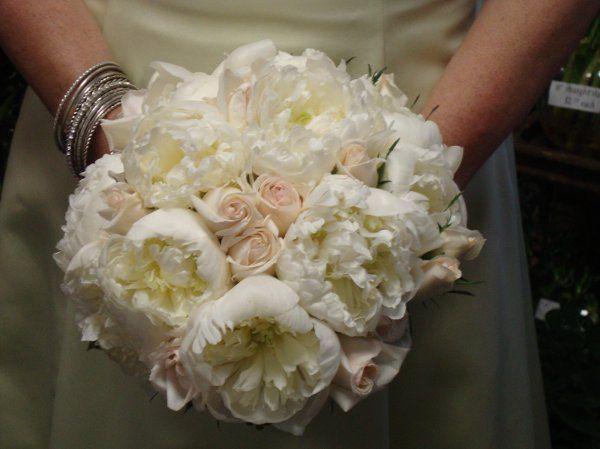 Tmx 1299933567927 WeddingBouquet45SteinYourFloristCo. Philadelphia wedding florist