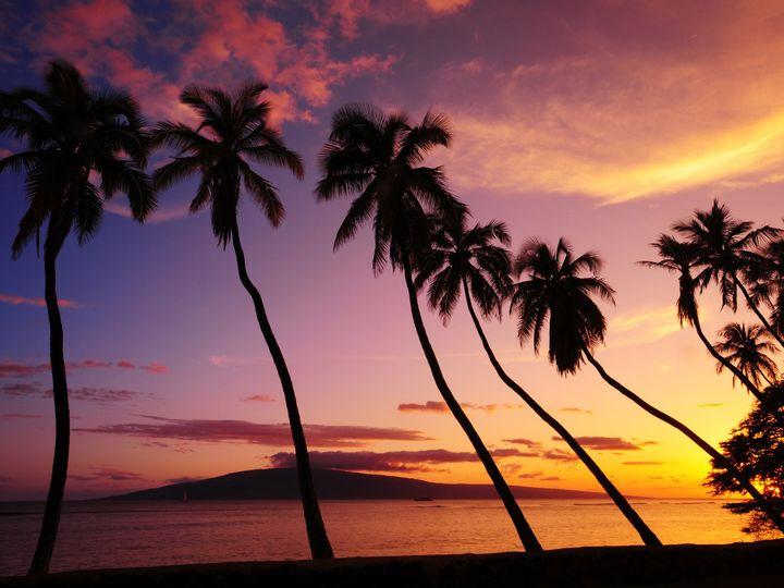 Tmx 1474512701056 Hawaiimauipalms050708dsc0451 Brandon, MS wedding travel