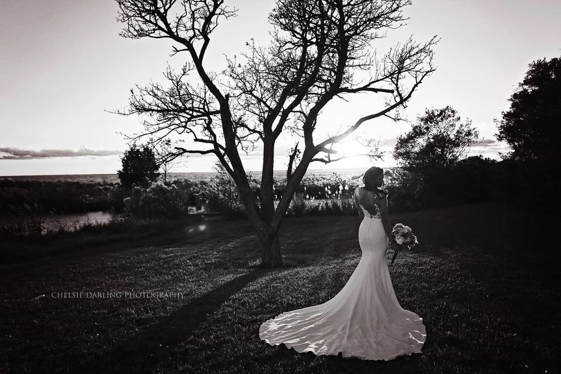 Chelsie Darling Photography