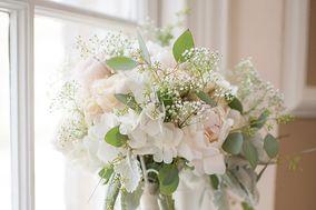 Jenny Luu Flowers