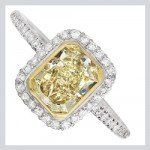 Tmx 1342211836615 Fancyyellow Leesburg wedding jewelry