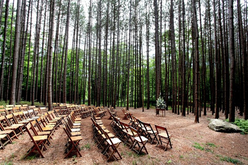 Setup for a wedding ceremony in the pine grove at The Roxbury Barn and Estate