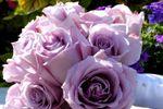 Lompoc Valley Florist & Home Decor image
