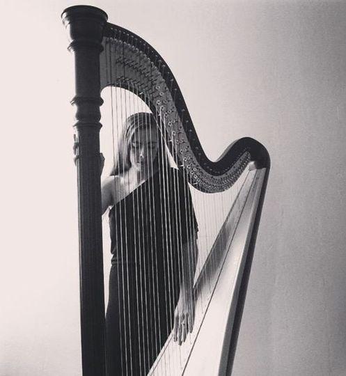 black and white harp photo