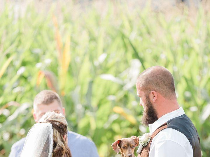 Tmx 1512342259083 Erins Favorites 0115 Halethorpe, MD wedding florist