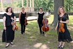 Wilmington String Ensemble image