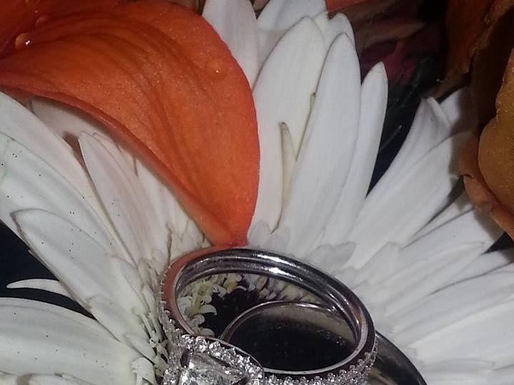 Tmx 22007481 1912885972366374 1822700878215470686 N 51 578636 159957437319502 Howell, MI wedding photography
