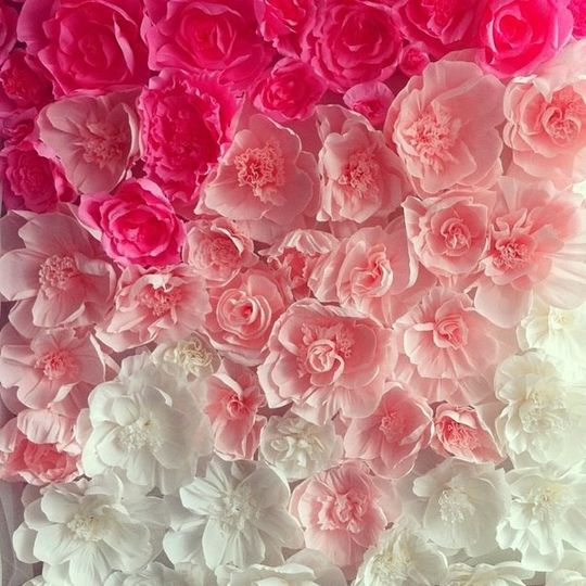 Ombre Effect Free Standing Paper Flower Wall. We make this 6x6 feet, 8x8 feet or other custom...