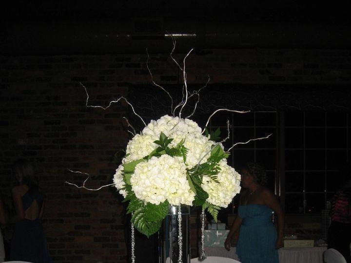 Tmx 1349868756730 IMG6310 Westland wedding rental