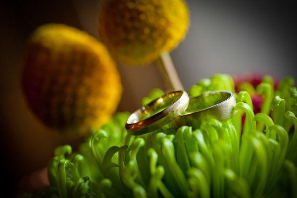 Tmx 1421877711249 Dsc6166 Burlington, VT wedding photography