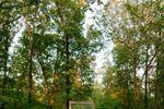 Rustic Oaks Weddings & Event Venue image