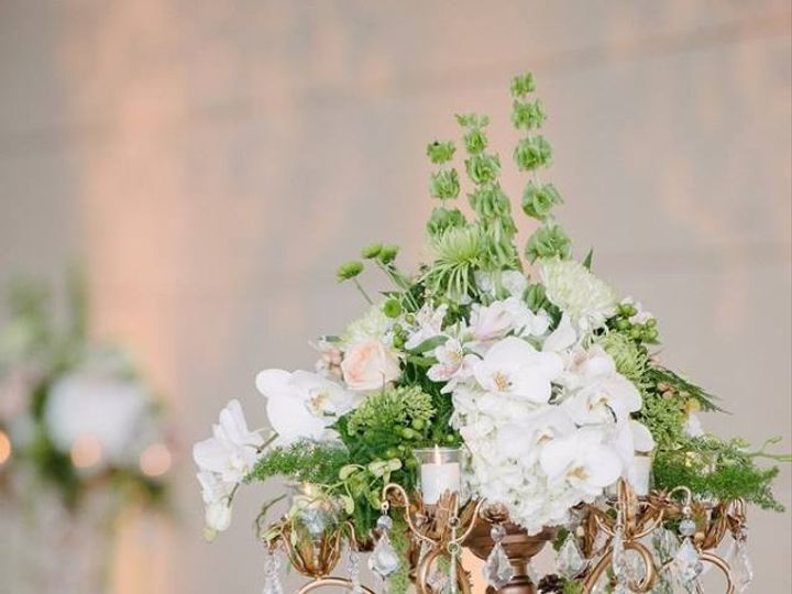 Tmx 1444231680767 Mylez2 Tampa wedding florist