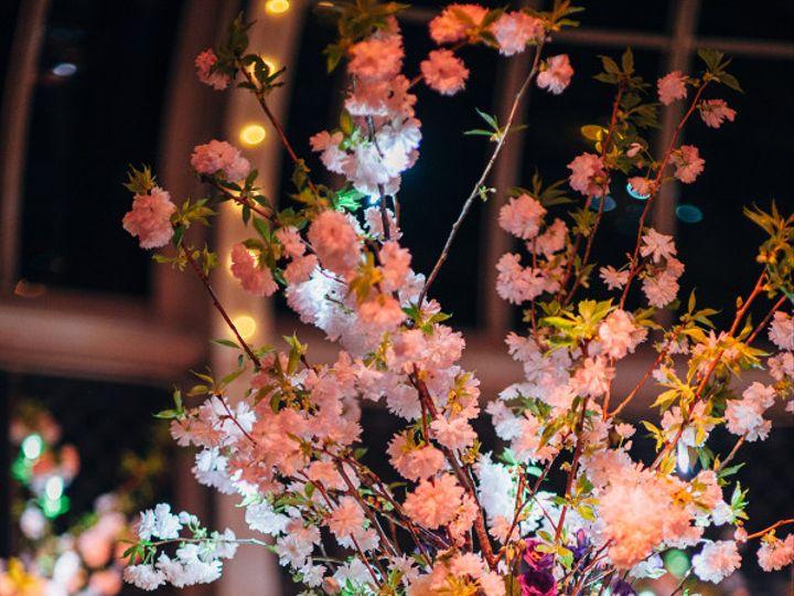 Tmx 1457103911350 Veraalon552fatorangecat New York wedding florist