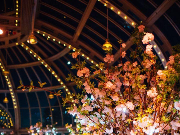 Tmx 1457103929695 Veraalon563fatorangecat New York wedding florist