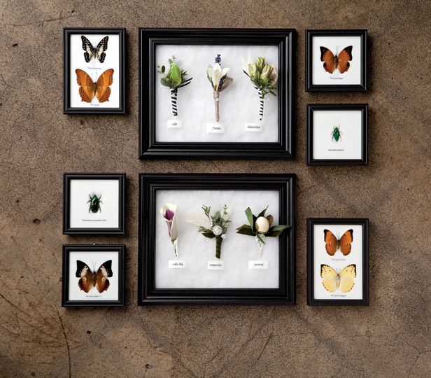 Beautiful specimens: a selection of boutonnieres for the modern, romantic man.