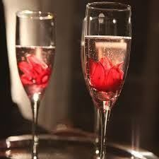 Tmx 1521145530 4e5bff2b72e0eb32 1521145529 3f12600f04cde025 1521145527946 1 Hibiscus Prosecco  Boston, MA wedding venue