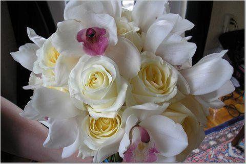 Tmx 1246885944207 47b7cc24b3127cceb2456ca1195400000026108AYsnLJk0aNv1 Casselberry, FL wedding florist