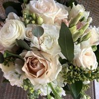 Tmx 2019 3 51 23146 1558433050 Casselberry, FL wedding florist