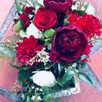 Tmx 2019 8 51 23146 1558439374 Casselberry, FL wedding florist