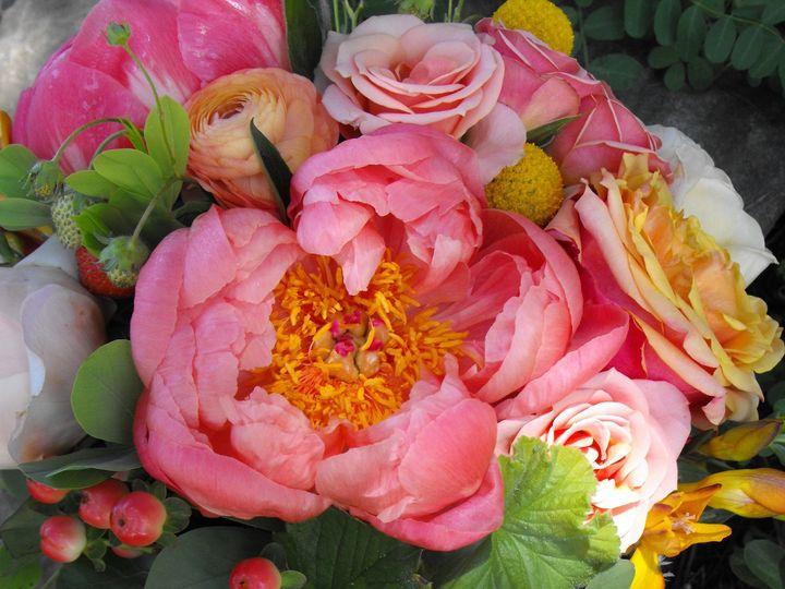Tmx 1374886528124 Dscf9074 Kingston, New York wedding florist