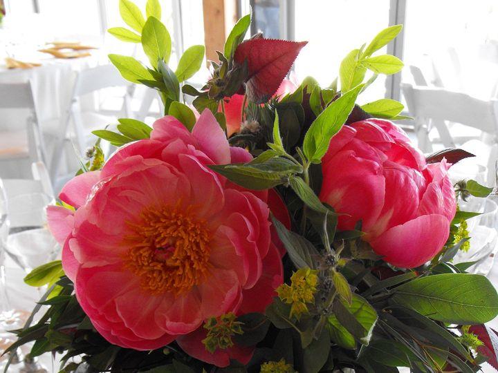 Tmx 1374886641182 Dscf9085 Kingston, New York wedding florist