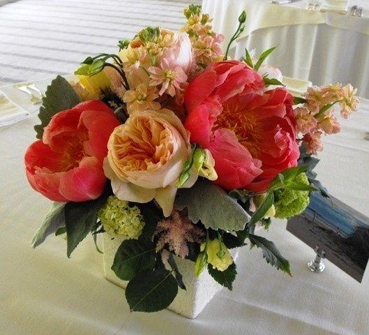 Tmx 1374886693716 Coral Charm Centerpiece Kingston, New York wedding florist