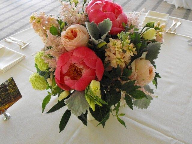 Tmx 1374886700234 Coral Charm Peony Dusty Miller And Garden Rose Centerpiece Kingston, New York wedding florist