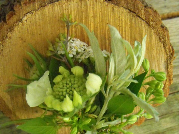 Tmx 1374887001889 Dscf9238 Kingston, New York wedding florist