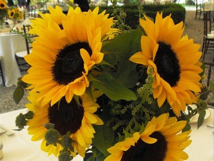 Tmx 1395849208455 Sunflower Centerpiece Lr Kingston, New York wedding florist