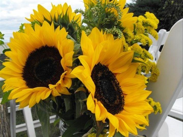Tmx 1395849216222 Sunflower Ceremony Mason Jar Kingston, New York wedding florist