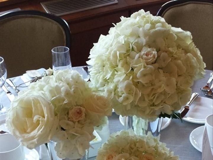 Tmx 1395852289473 Graduated Hydrangea Centerpiec Kingston, New York wedding florist