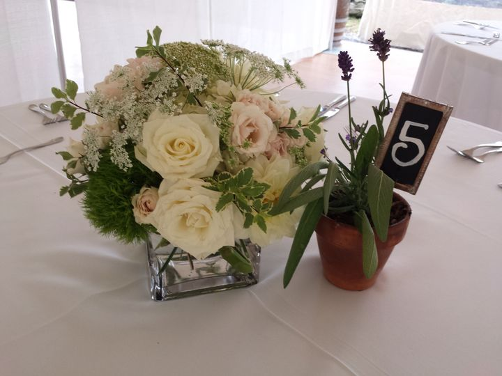 Tmx 1470684444121 20150912142711 Kingston, New York wedding florist