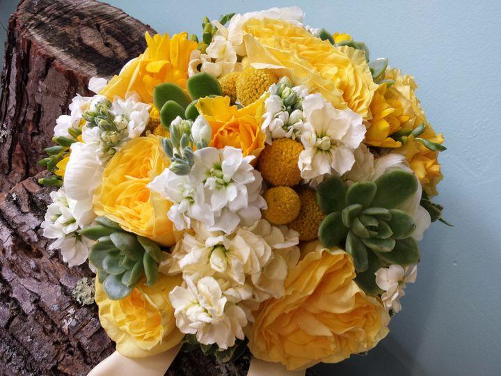 Tmx 1470685203095 20150925152236 Kingston, New York wedding florist