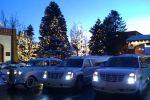 A Platinum Limousine image