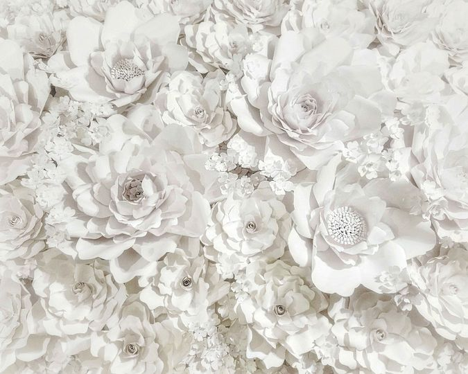 Luxurious paper backdrops