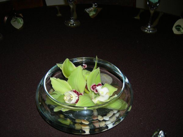 flowers029