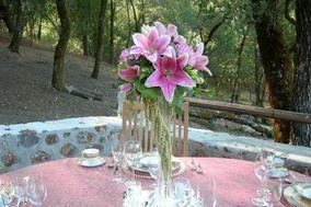 Heavenly Blossoms Florist