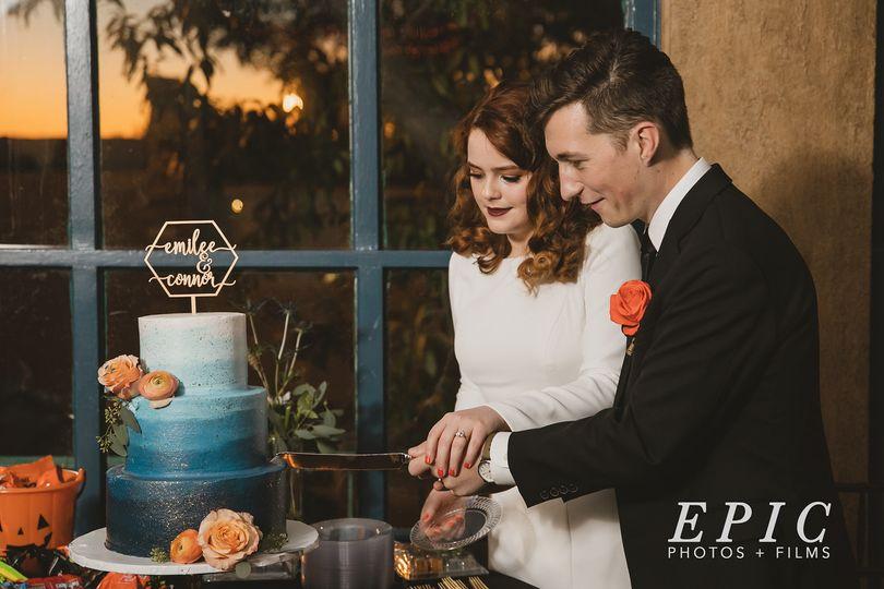 professional pic wedding2 51 204846 161005061249778