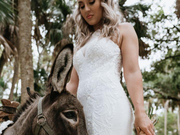 Tmx Dress Detail 51 24846 157548261654767 Tampa, FL wedding dress