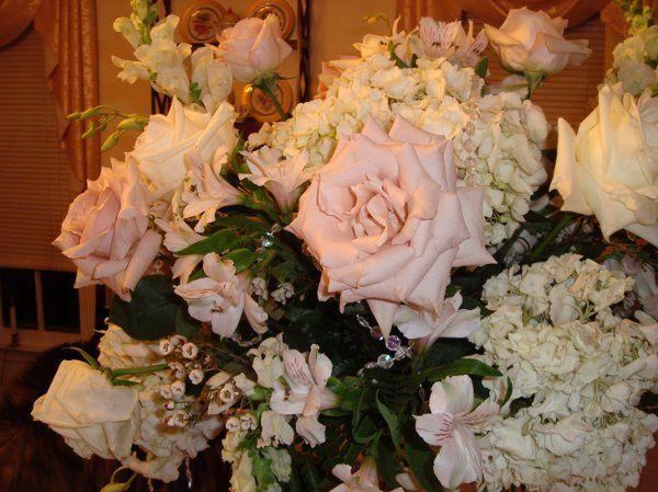 Tmx 1295819038386 DSC00963 Cherry Hill wedding florist