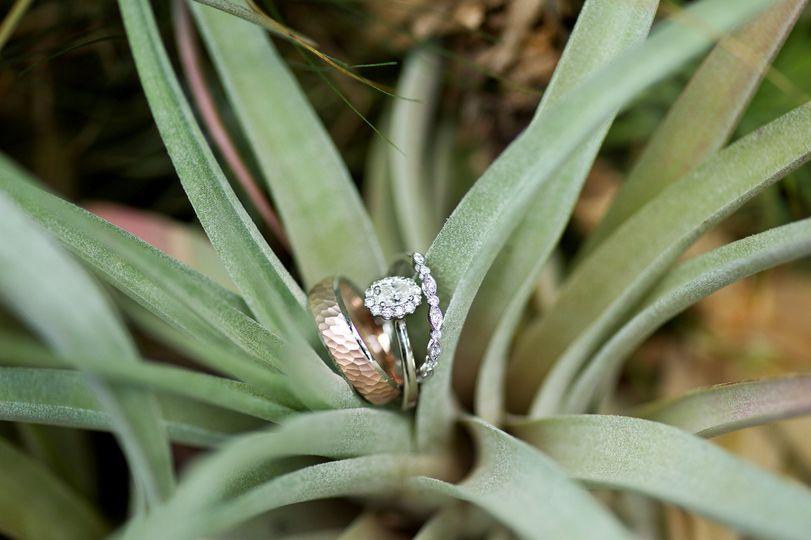 Asheville Wedding PhotographyA