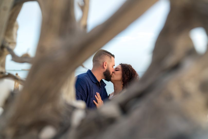 Miami Wedding Photographer - tree