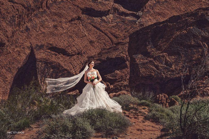 Miami Wedding Photographer - terrain
