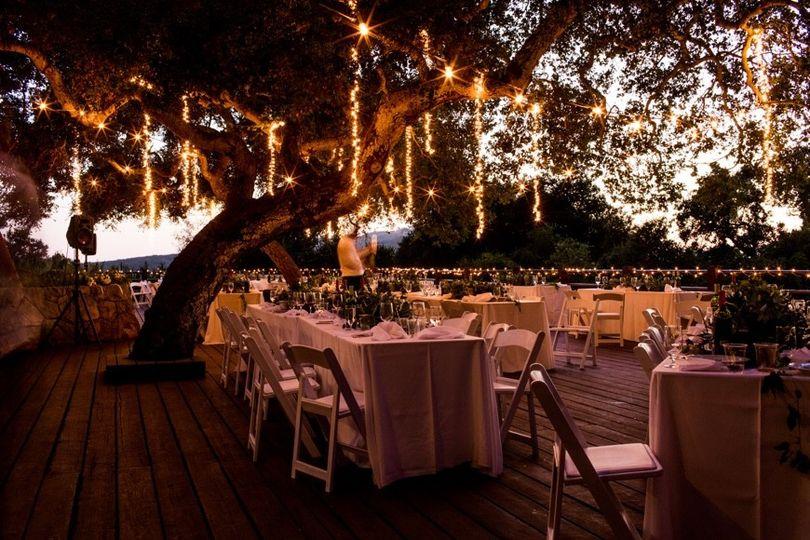 AMS Events wedding lights